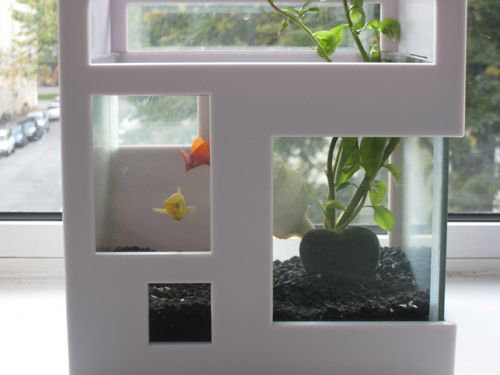 Camilla N er fiskeven - her med Billy og Blondie i det cool akvarium Fish Hotel fra Normann Copenhagen.
