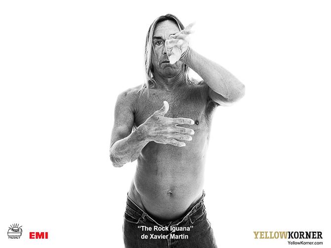 Fra tid til anden producerer YellowKorner prestige editions af verdensstjerner. Så kan fans verden over hænge deres ikon på væggen.