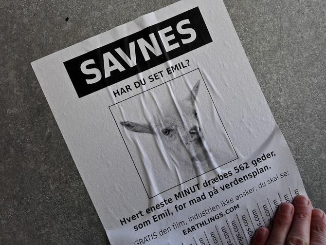 Egentlig var det billedet af geden, der fangede min opmærksomhed, men budskabet var vist mere... brutalt.