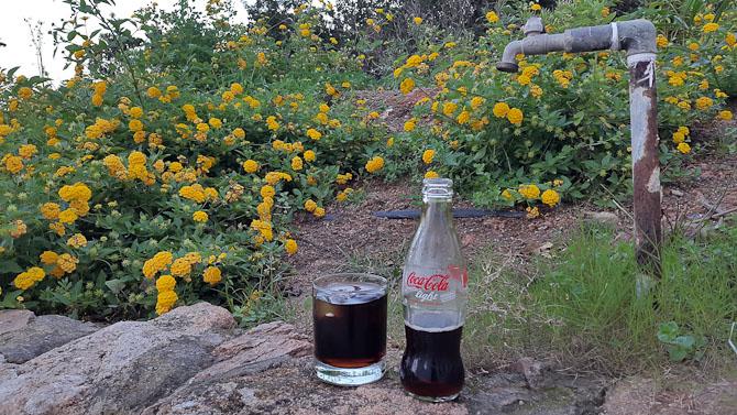 Cola-hane og bed