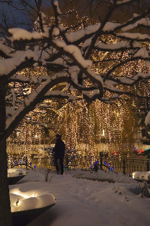 Julestemning i Tivoli - for en gangs skyld er det ok at skrive om julen i god tid.