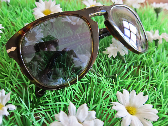 Der er kigget på strande, motorveje, skove og andet godt gennem disse briller