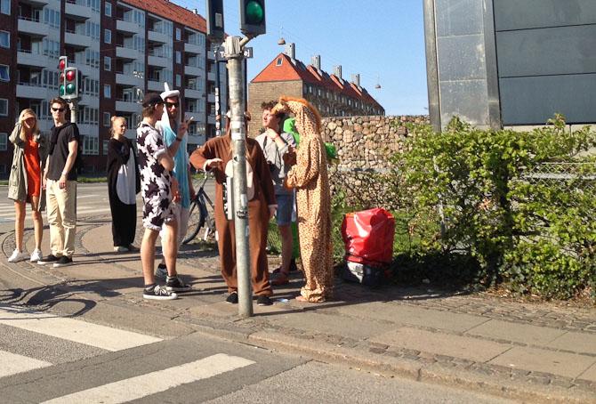 En vanlig søndag på Nørrebro