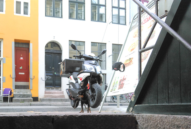 Ejnar parkerede sin scooter