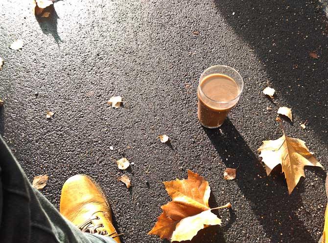 Solskin, løvfald og kaffe