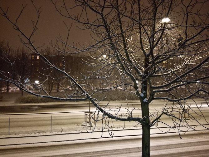Det sneede! Det klædte området så fint.