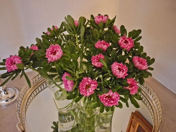 Blomster af en art