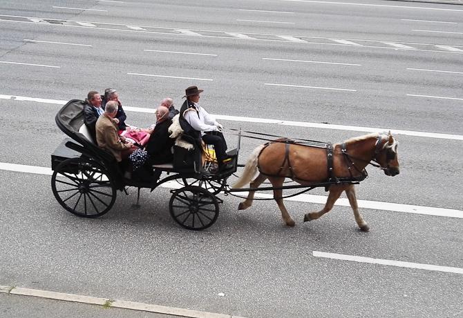 Amish'ish