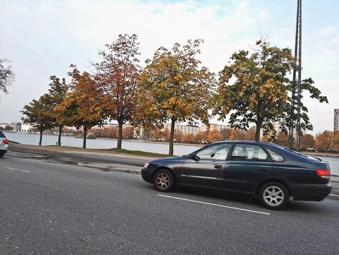 Det er blevet efterår