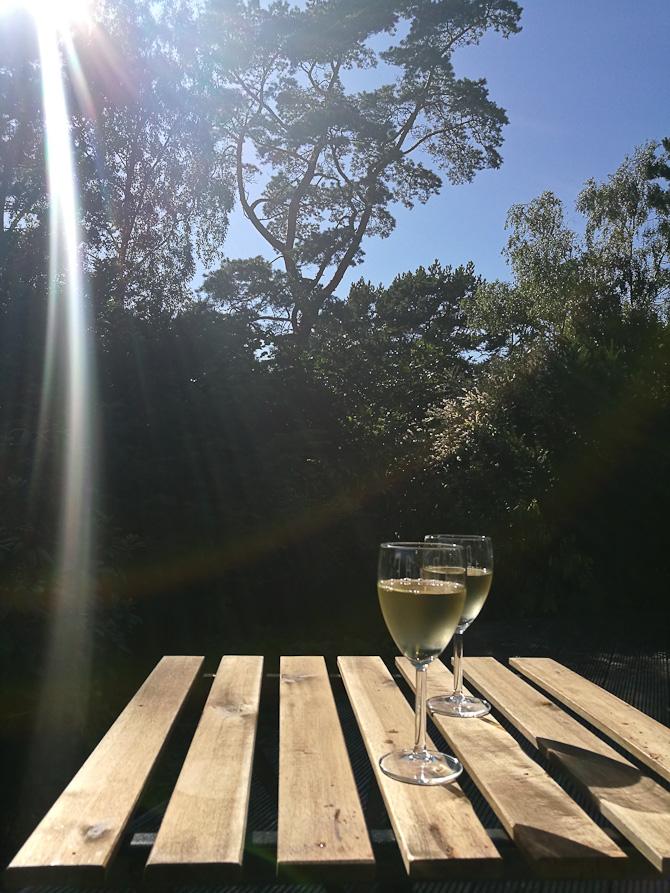 Solsking og hvidvin