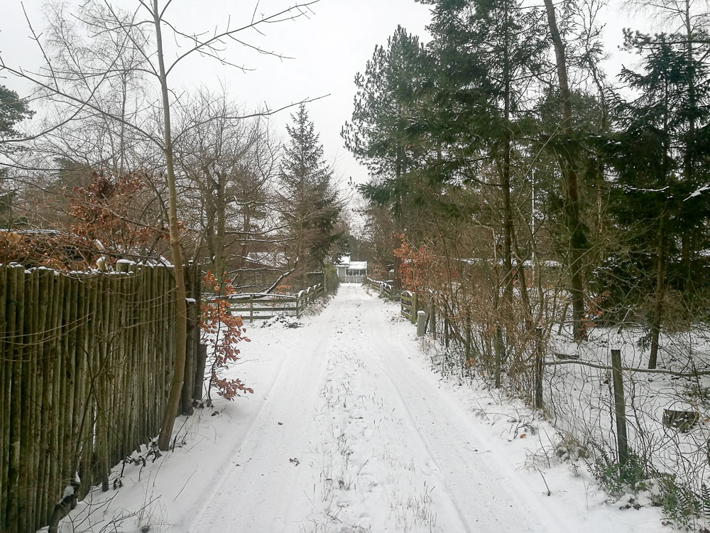 Vinterhuse