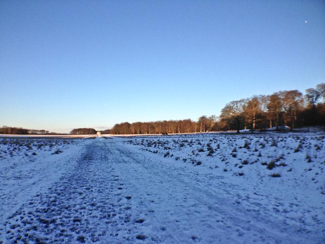 En løbetur på 15 kilometer i smukt vejr